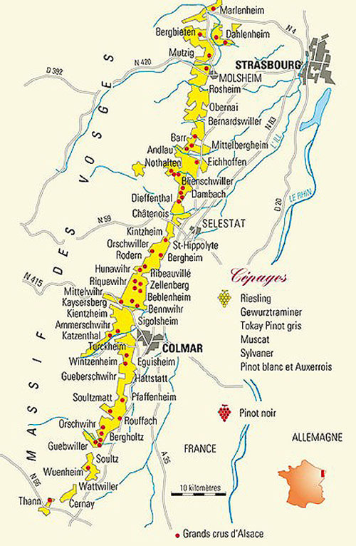 The Wines of Alsace T Edward Wines