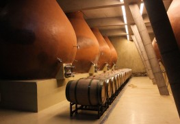 Ancestral Winemaking at Bodegas RE