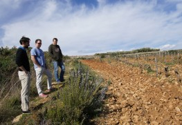 In Bandol with Domaine la Suffrene
